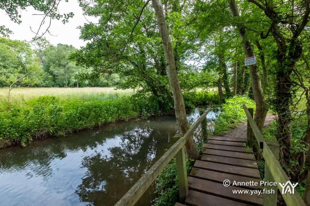 Hazeley Hampshire UK 21 6 20 97
