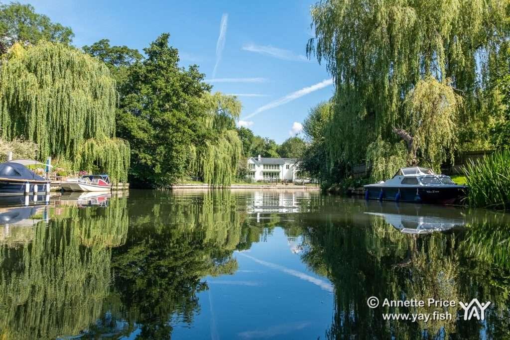 River Loddon, near Shiplake, UK.