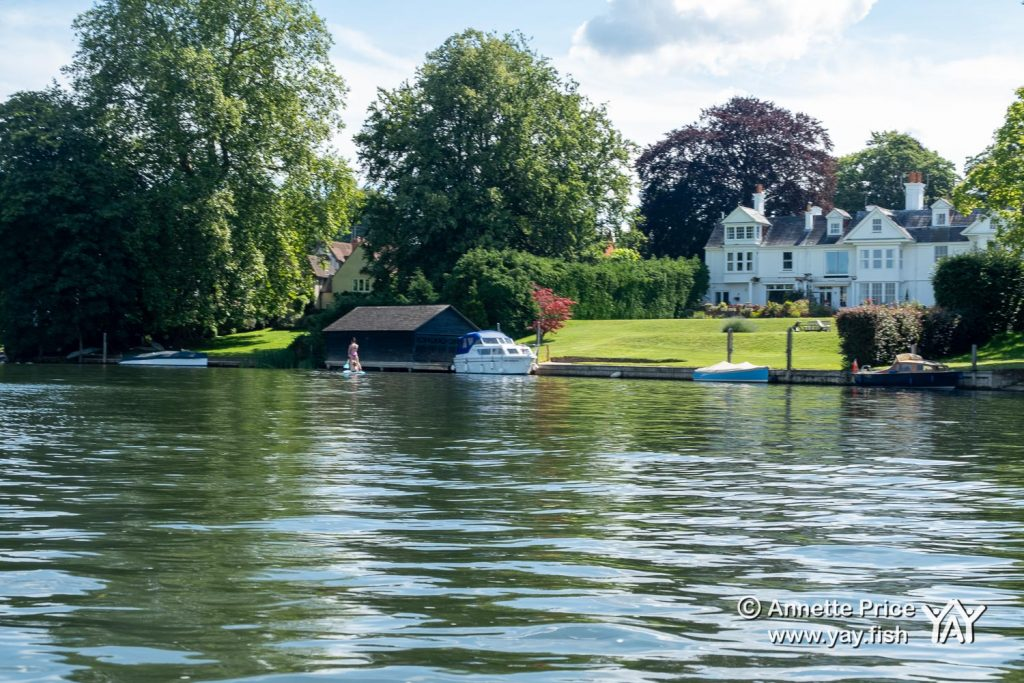 River Thames near Wargrave UK 12 7 20 3